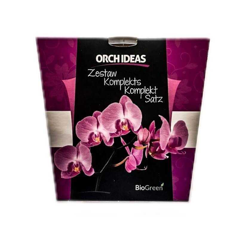 Rinkinys orchidėjos persodinimui pigiau